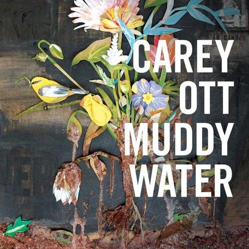 Muddywater de Carey Ott