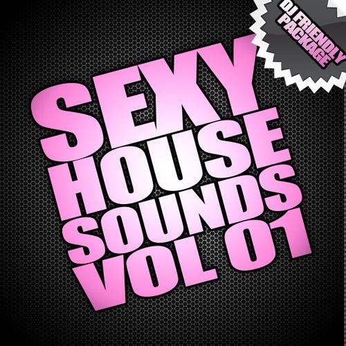 Sexy House Sounds Vol 1 (DJ PACKAGE) de Various Artists