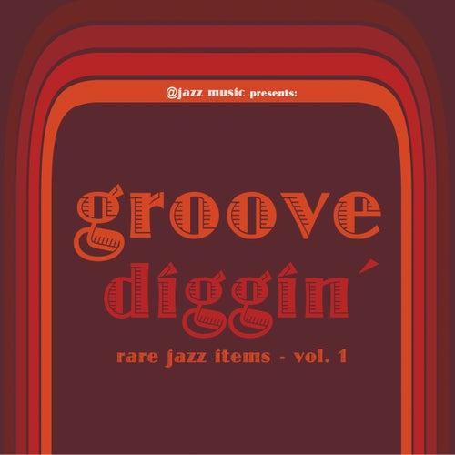 Groove Diggin' von Various Artists