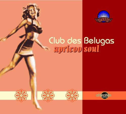 Apricoo Soul de Club Des Belugas