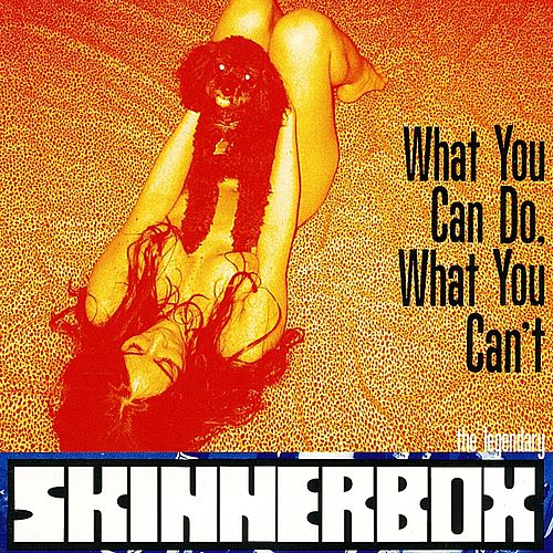 What You Can Do, What You Can't by Skinnerbox