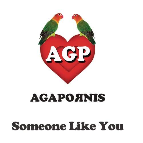 Someone Like You de Agapornis