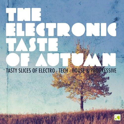 The Electronic Taste of Autumn - Tasty Slices of Electro-Tech-House & Progressive von Various Artists