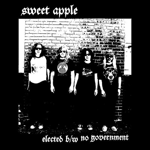 Elected/No Government by Sweet Apple