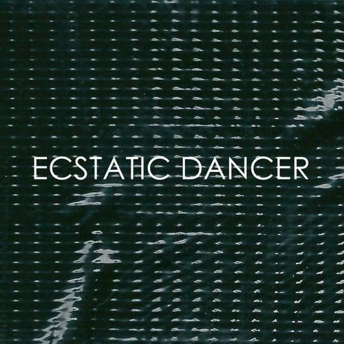 Ecstatic Dancer - Single by Fujiya & Miyagi