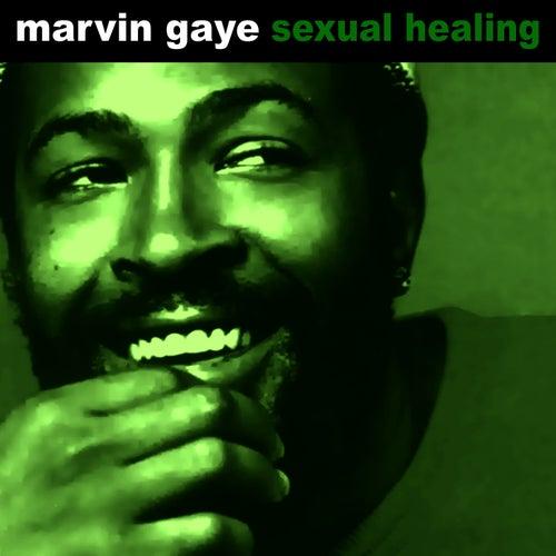 Sexual Healing de Marvin Gaye