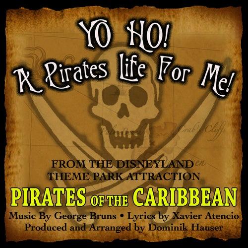 Yo Ho, Yo Ho! A Pirate's Life For Me (Theme song    by