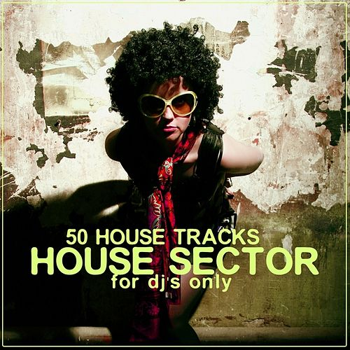 House Sector (50 House Tracks) by Various Artists