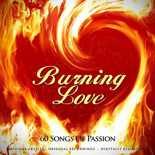 Burning Love 60 Songs of Passion by Various Artists