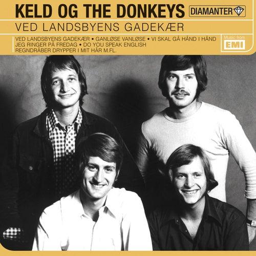Ved Landsbyens Gadekær de The Donkeys