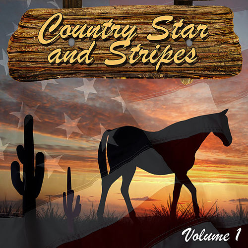 Country Star and Stripes Vol. 1 de Various Artists