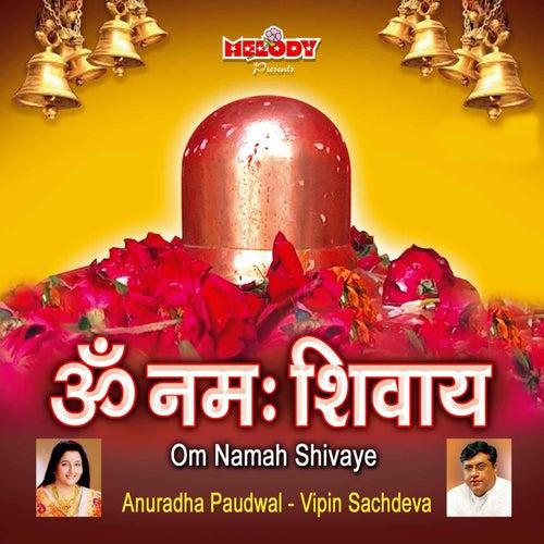Om Namah Shivaye by Various Artists