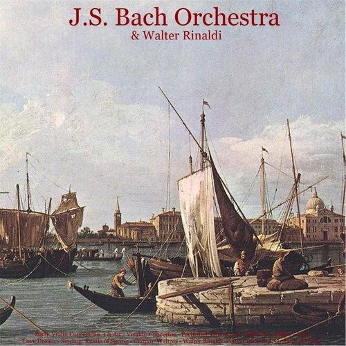 Bach: Violin Concerto No. 1 & Air - Vivaldi: Concertos - Pachelbel: Canon in D - Albinoni: Adagio - Listz: Love Dream - Sinding: Rustle of Spring - Chopin: Waltzes - Walter Rinaldi: Piano Concerto & Orchestral Works de Johann Sebastian Bach