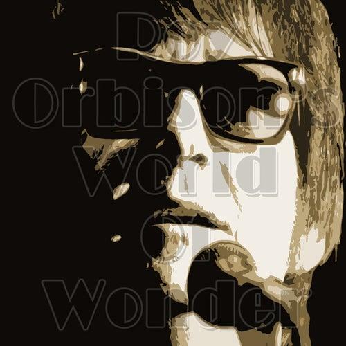 Roy Orbison's World Of Wonder von Roy Orbison