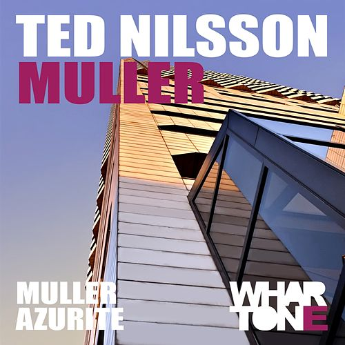 Muller - Single by Ted Nilsson