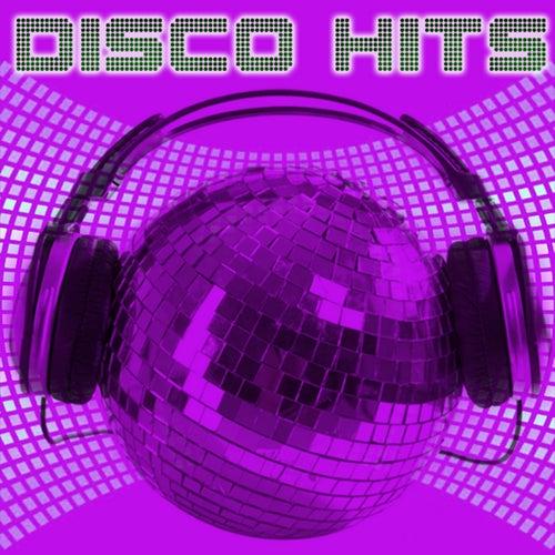 Disco Hits de Various Artists