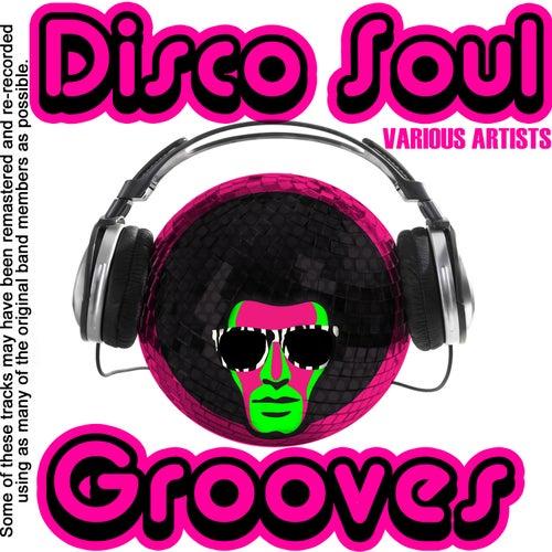 Disco Soul Grooves de Various Artists