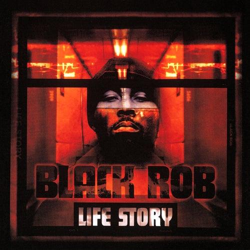 Life Story de Black Rob