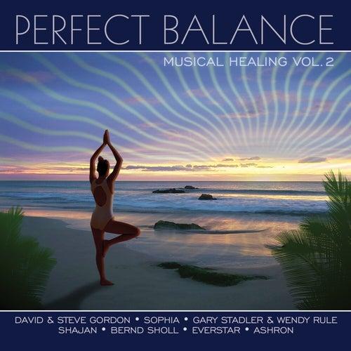 Perfect Balance Musical Healing Vol. 2 von Various Artists
