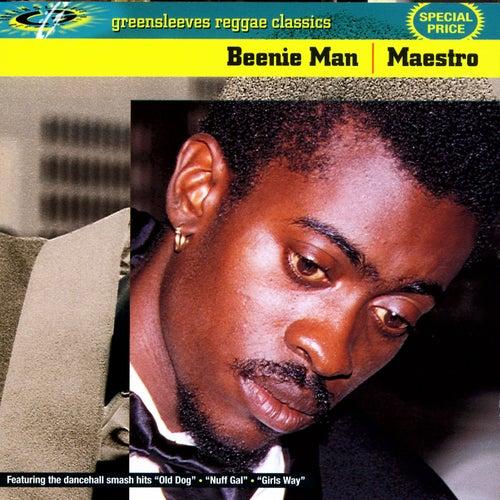 Maestro de Beenie Man