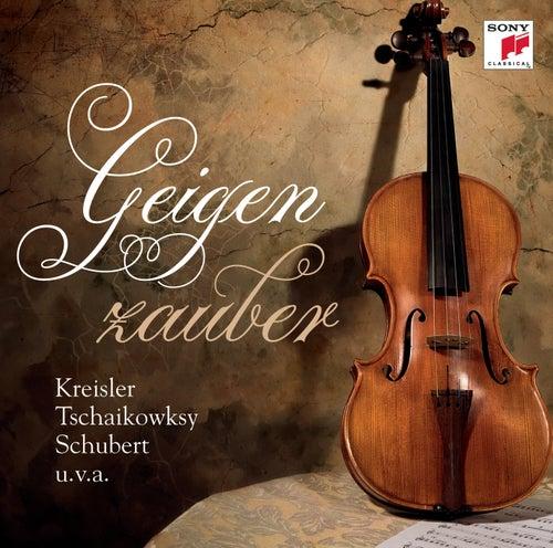 Geigenzauber von Various Artists