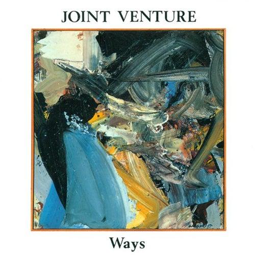 Joint Venture: Ways von Joint Venture