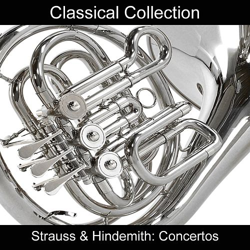 Strauss & Hindemith: Concertos de The Music Of Life Orchestra