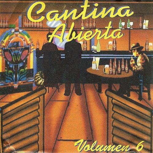 Cantina Abierta, Vol. 6 de Various Artists