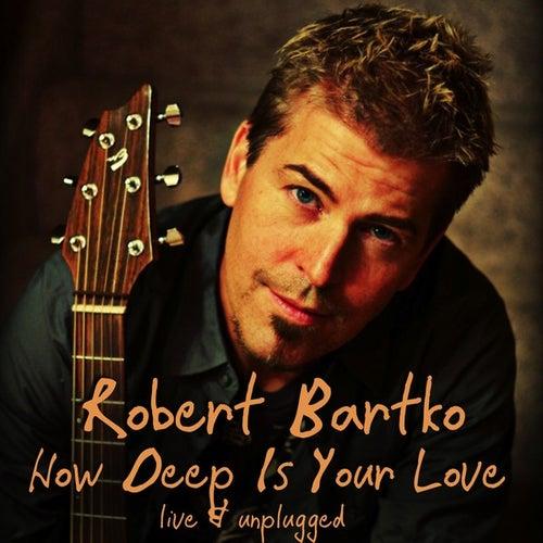 How Deep Is Your Love - Single von Robert Bartko
