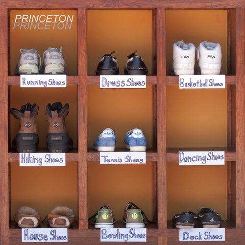 Shout It Out by Princeton