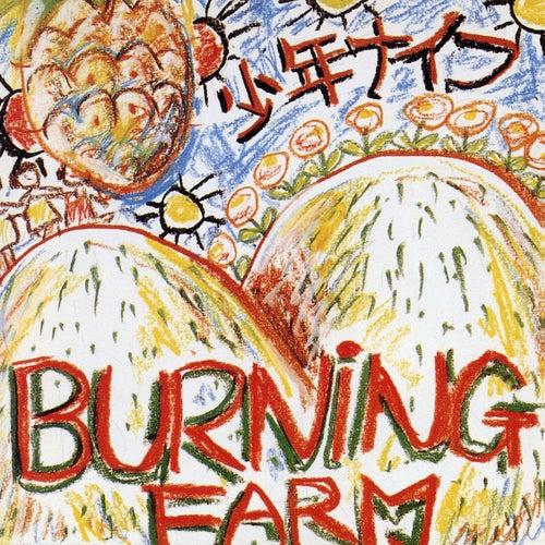 Burning Farm by Shonen Knife