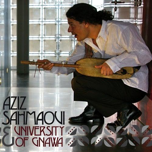 University of Gnawa by Aziz Sahmaoui
