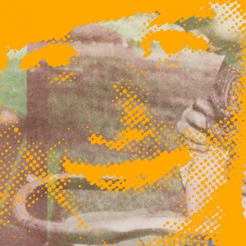 Fluorescent Grey EP van Deerhunter