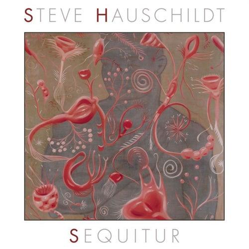 Sequitur by Steve Hauschildt