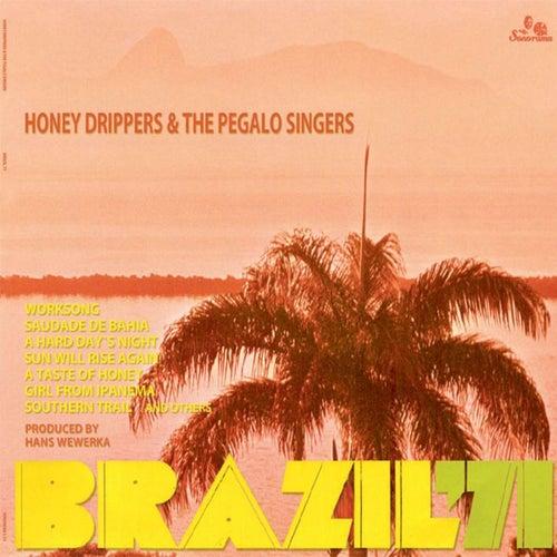 Brazil '71 de The Honeydrippers