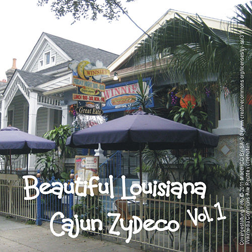Beautiful Louisiana -Cajun Zydeco, Vol.1 von Various Artists