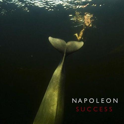 Success von Napoleon