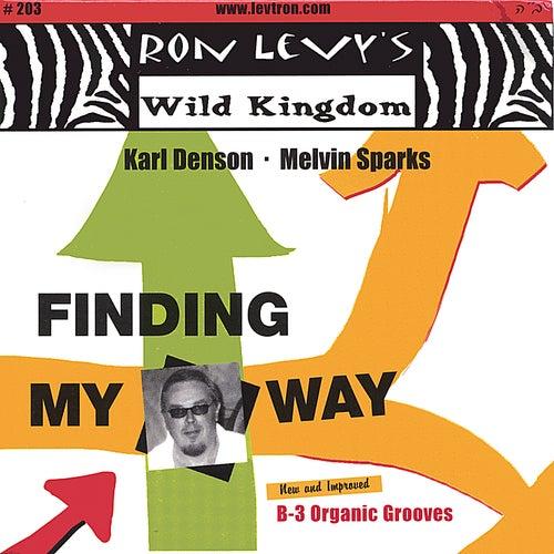Finding My Way de Karl Denson