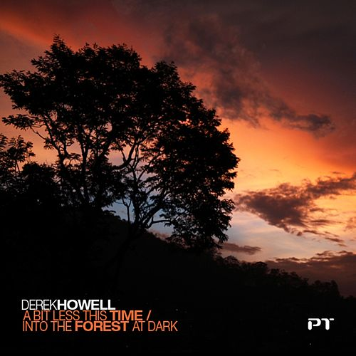 A Bit Less This Time / Into The Forest At Night - Single de Derek Howell
