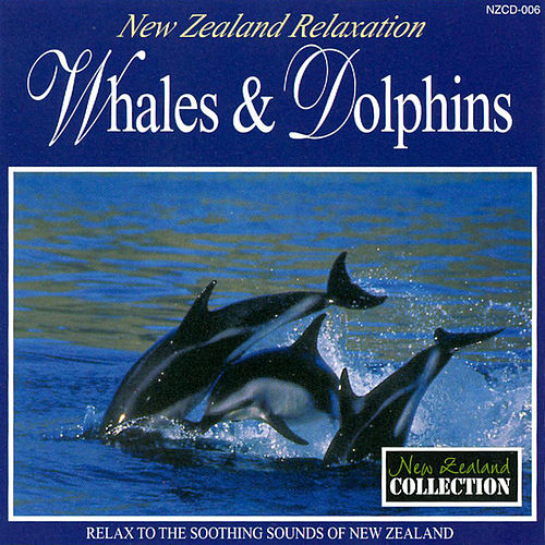 Whales & Dolphins by Anton Hughes