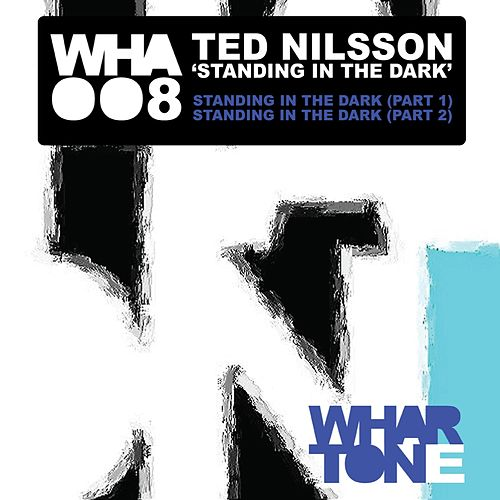 Standing In The Dark by Ted Nilsson