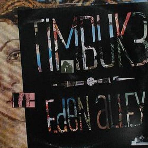 Eden Alley von Timbuk 3