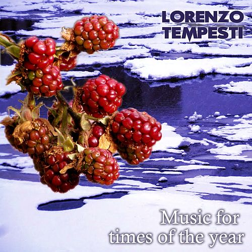 Music for Times of the Year (Colonne sonore per video) by Lorenzo Tempesti