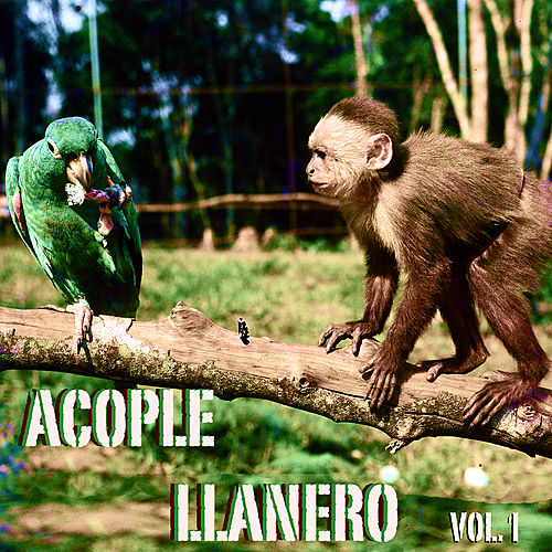 Acople Llanero Vol. 1 by Various Artists