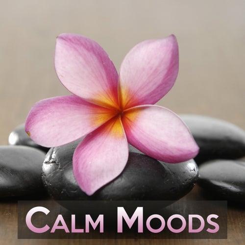 Calm Moods de Various Artists