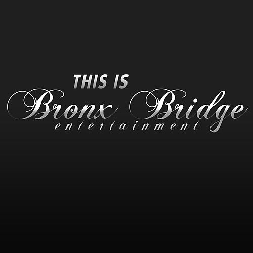 This Is Bronx Bridge Entertainment, Inc. de Various Artists
