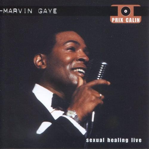 Sexual Healing Live de Marvin Gaye