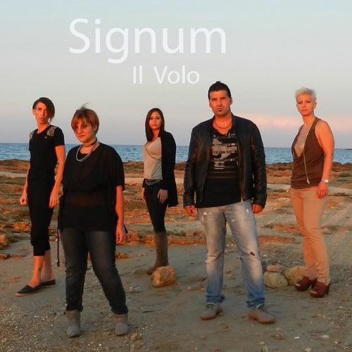 Il volo von Signum