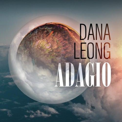 Adagio by Dana Leong