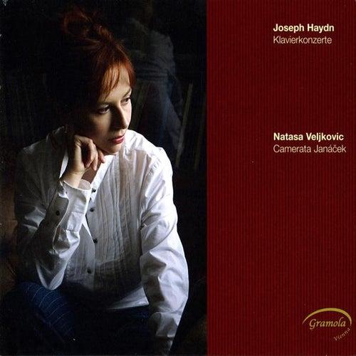 Haydn: Klavierkonzerte von Natasa Veljkovic